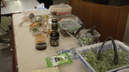 Outreach project II – UCN LOVE VEG@ Workplace Program - Photo - 7